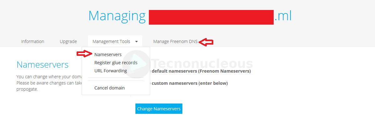 opciones-sobre-dominio-freenom