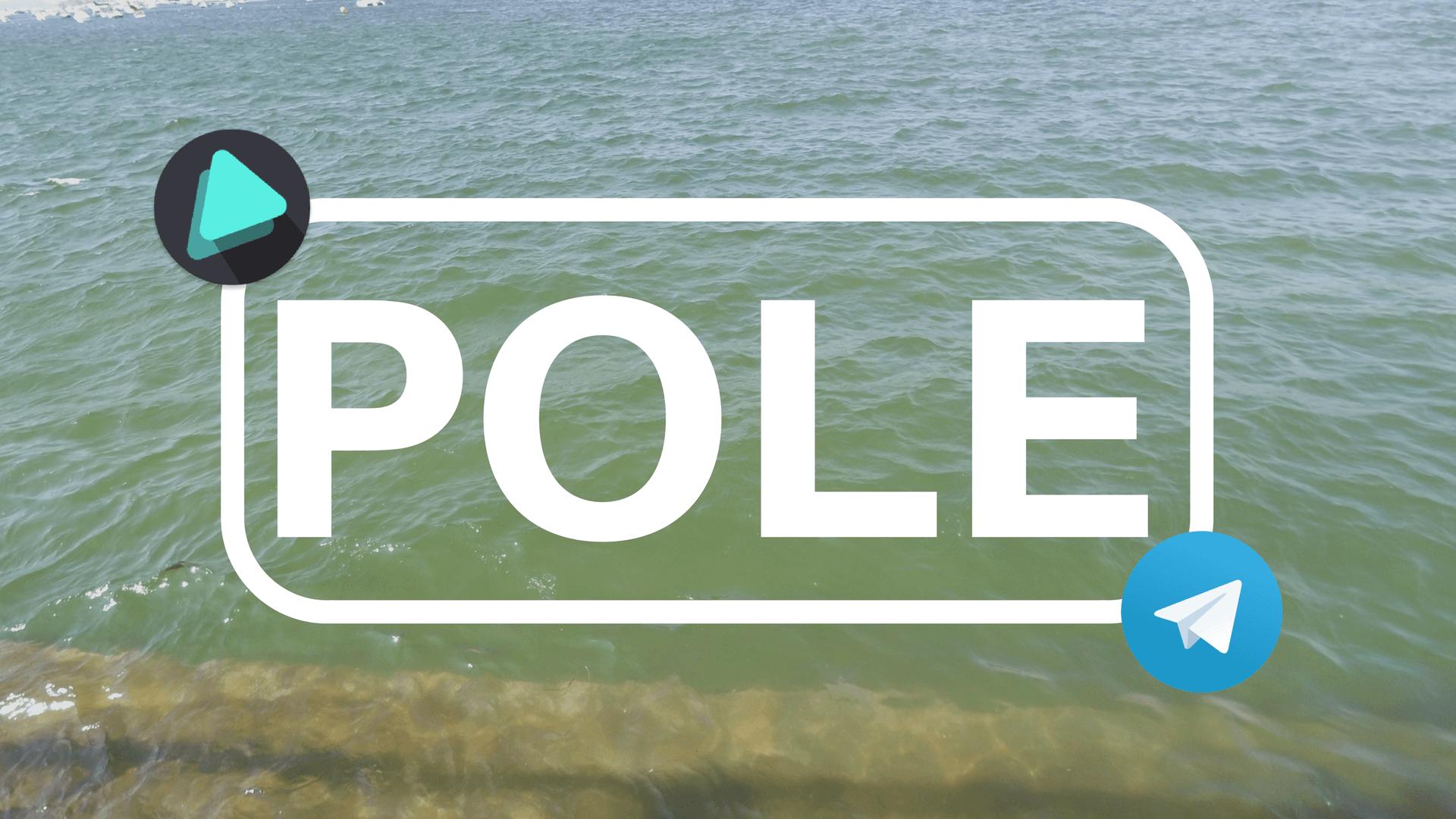 Truco para ganar siempre la Pole en Telegram