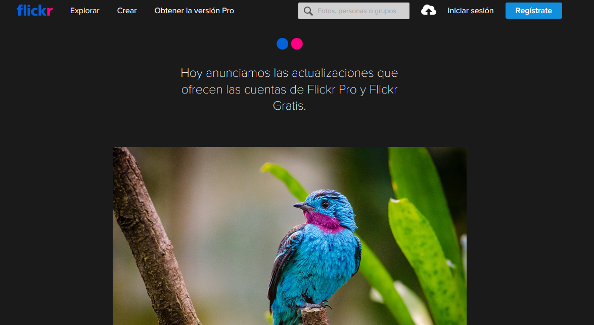 Flickr limitará a los usuarios gratuitos a solo poder subir 1000 fotos y videos