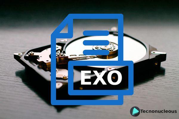 ¿Qué es la extensión de archivo exo?